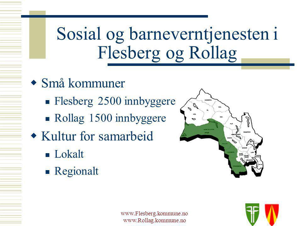 www.Flesberg.kommune.no www.Rollag.kommune.no Modell valget  Hvilken modell vurderte vi som best.