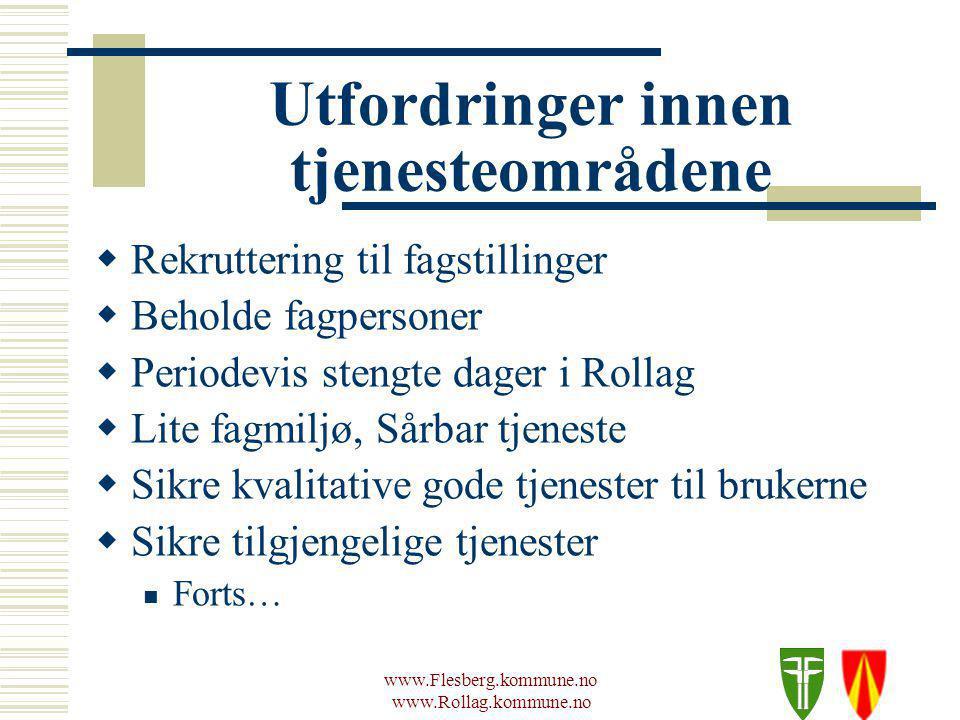 www.Flesberg.kommune.no www.Rollag.kommune.no Utfordringer innen tjenesteområdene Forts…..