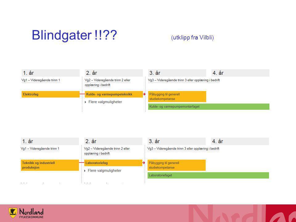 Blindgater !!?? (utklipp fra Vilbli)