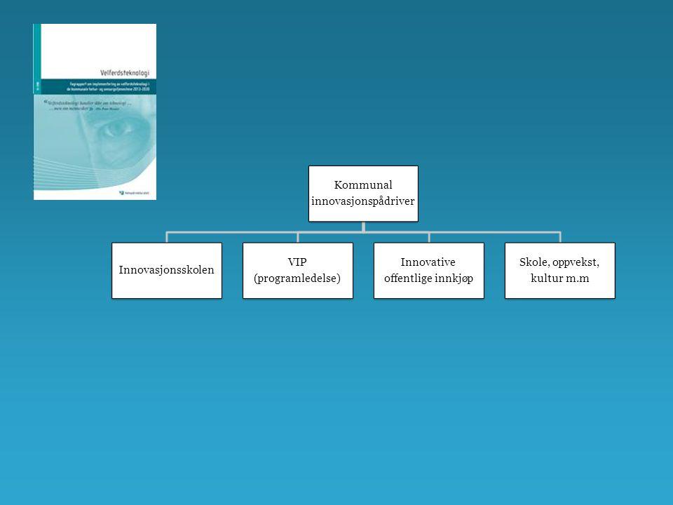 Kommunal innovasjonspådriver Innovasjonsskolen VIP (programledelse) Innovative offentlige innkjøp Skole, oppvekst, kultur m.m