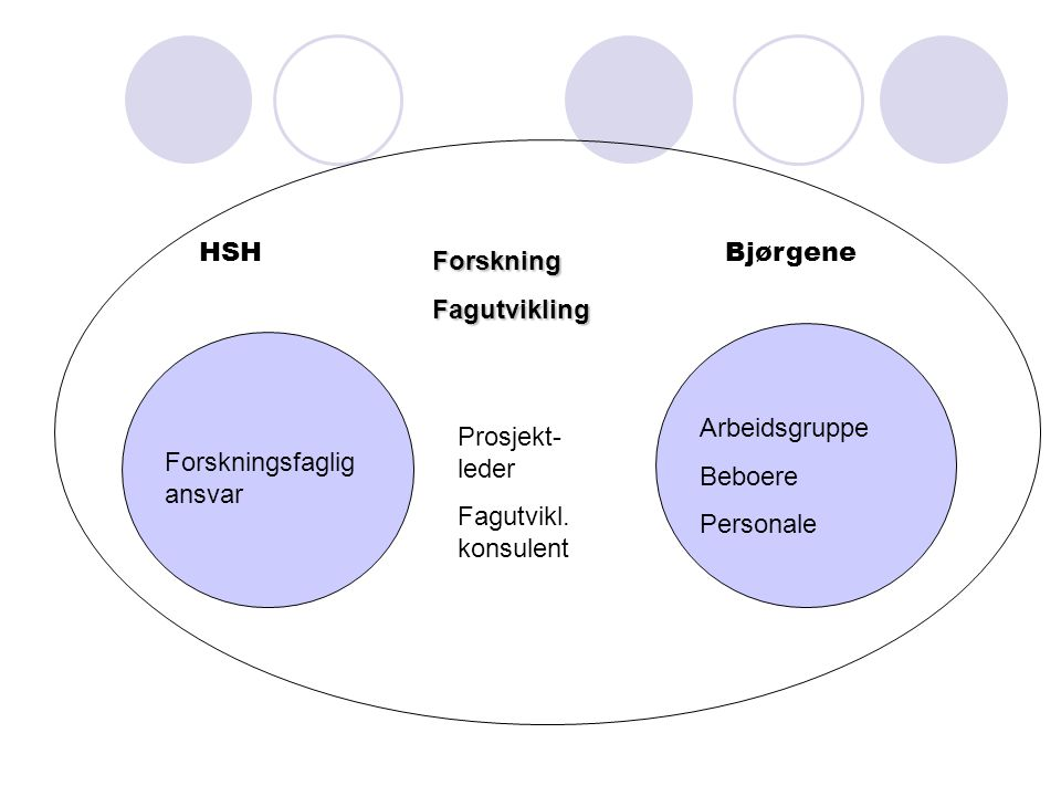 HSHBjørgene ForskningFagutvikling Forskningsfaglig ansvar Prosjekt- leder Fagutvikl.