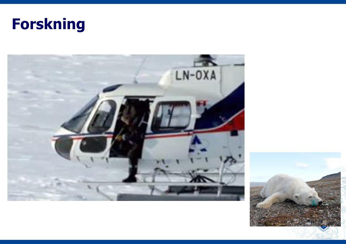 Sml §10 miljømessige teknikker og innsatsfaktorer «I virksomhet på Svalbard skal anvendes den teknikk som gir minst mulig belastning på miljøet…» «I virksomhet på Svalbard skal kjemiske og bioteknologiske produkter som kan volde skade eller ulempe for miljøet, erstattes med produkter som etter en samlet miljømessig vurdering gir mindre risiko for miljøet,..»