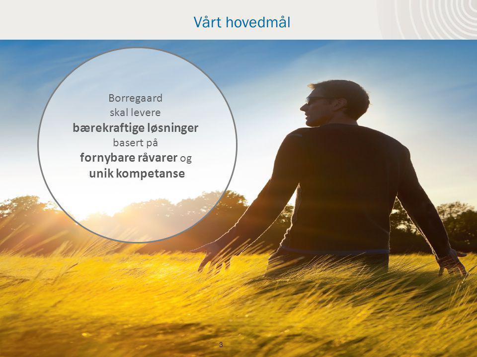 Vårt hovedmål 3 Borregaard skal levere bærekraftige løsninger basert på fornybare råvarer og unik kompetanse