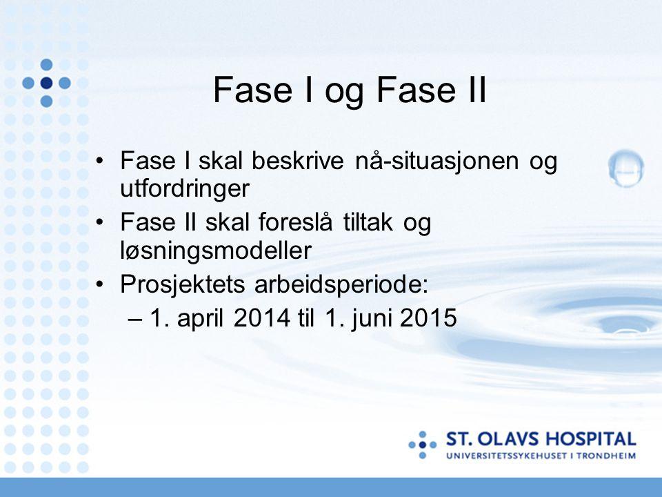 Fase I og Fase II Fase I skal beskrive nå-situasjonen og utfordringer Fase II skal foreslå tiltak og løsningsmodeller Prosjektets arbeidsperiode: –1.