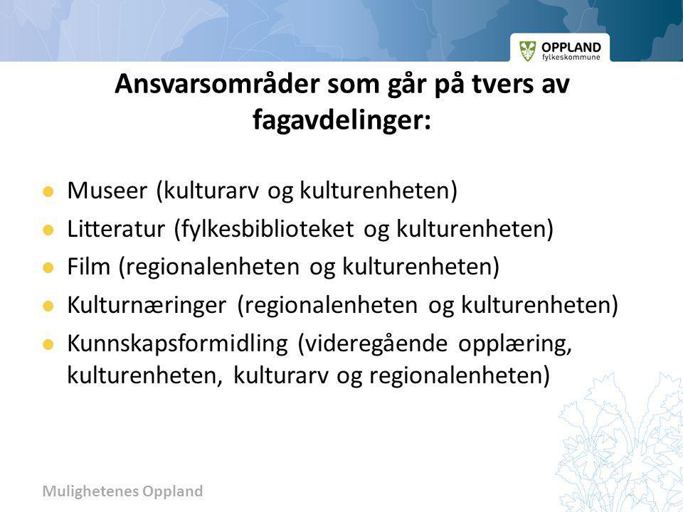 Mulighetenes Oppland Strategien skal Synliggjøre hvordan Oppland fylkeskommune kan bidra til å videreutvikle og styrke kulturlivet i fylket.
