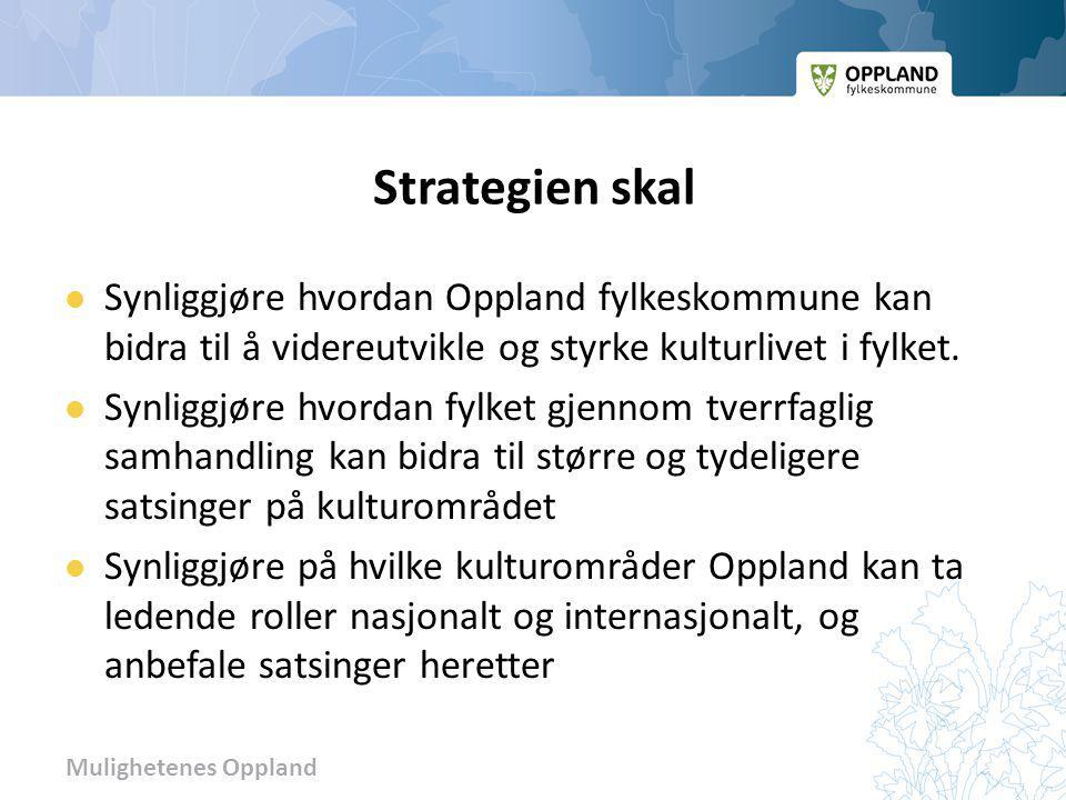 Mulighetenes Oppland Strategien skal Synliggjøre hvordan Oppland fylkeskommune kan bidra til å videreutvikle og styrke kulturlivet i fylket. Synliggjø