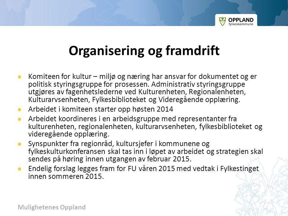 Mulighetenes Oppland Organisering og framdrift Komiteen for kultur – miljø og næring har ansvar for dokumentet og er politisk styringsgruppe for prose