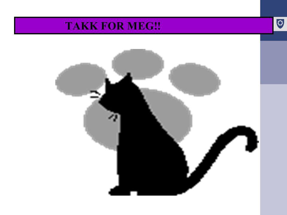 TAKK FOR MEG!!
