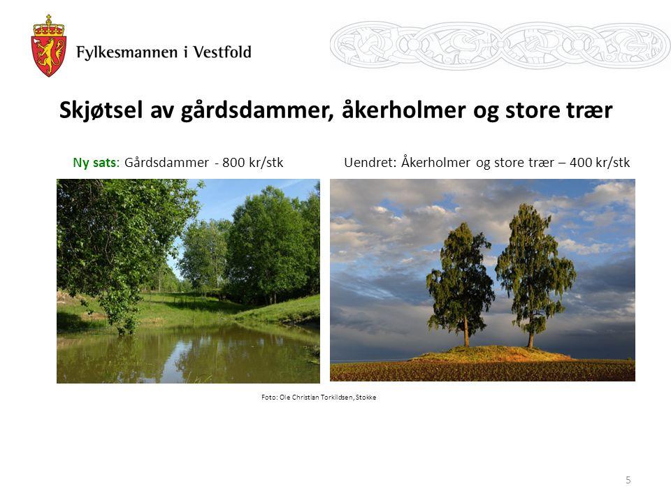 Skjøtsel av gårdsdammer, åkerholmer og store trær Ny sats: Gårdsdammer - 800 kr/stk Foto: Ole Christian Torkildsen, Stokke Uendret: Åkerholmer og store trær – 400 kr/stk 5