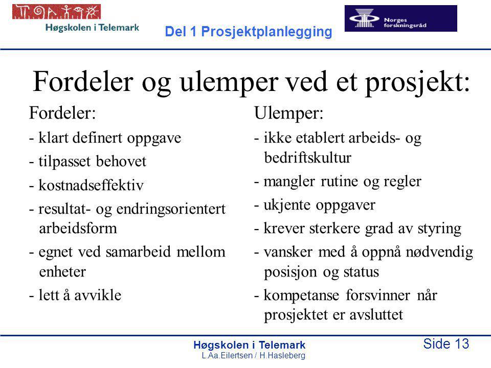Høgskolen i Telemark Side 13 L.Aa.Eilertsen / H.Hasleberg Fordeler og ulemper ved et prosjekt: Fordeler: - klart definert oppgave - tilpasset behovet