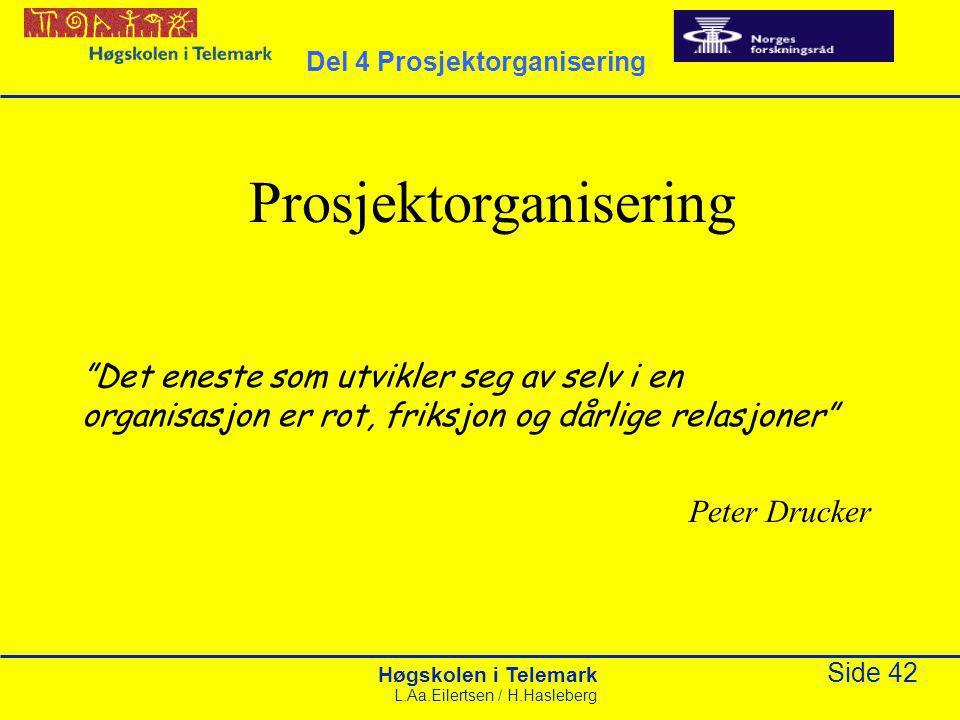 """Høgskolen i Telemark Side 42 L.Aa.Eilertsen / H.Hasleberg Prosjektorganisering """"Det eneste som utvikler seg av selv i en organisasjon er rot, friksjon"""