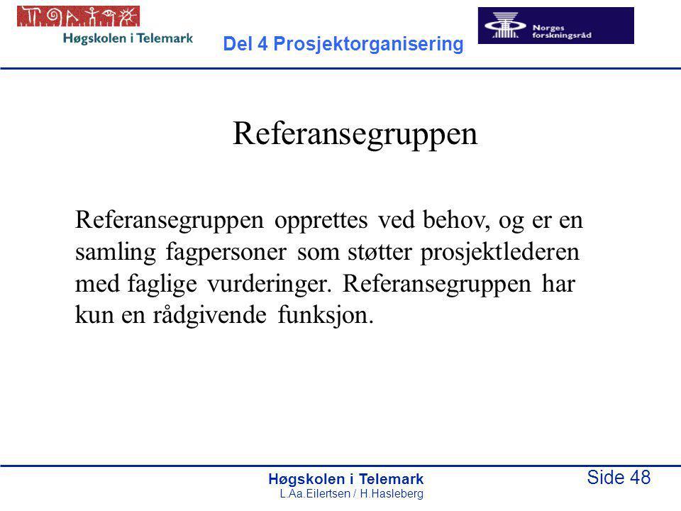 Høgskolen i Telemark Side 48 L.Aa.Eilertsen / H.Hasleberg Referansegruppen Referansegruppen opprettes ved behov, og er en samling fagpersoner som støtter prosjektlederen med faglige vurderinger.