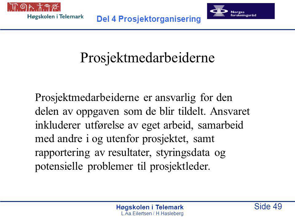 Høgskolen i Telemark Side 49 L.Aa.Eilertsen / H.Hasleberg Prosjektmedarbeiderne Prosjektmedarbeiderne er ansvarlig for den delen av oppgaven som de blir tildelt.