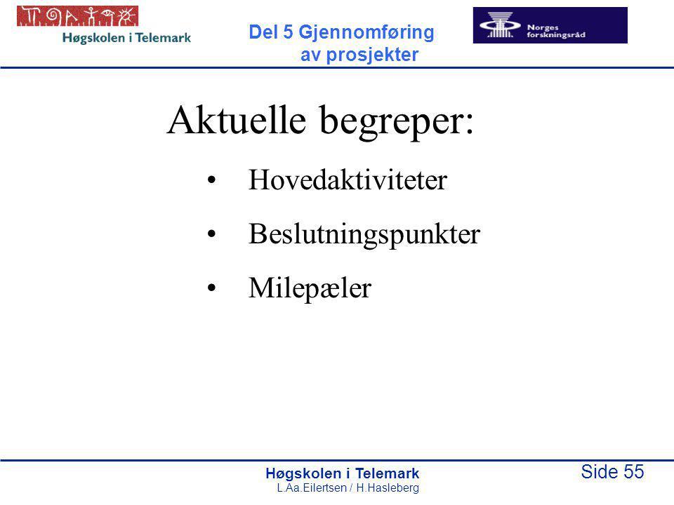 Høgskolen i Telemark Side 55 L.Aa.Eilertsen / H.Hasleberg Aktuelle begreper: Hovedaktiviteter Beslutningspunkter Milepæler Del 5 Gjennomføring av pros