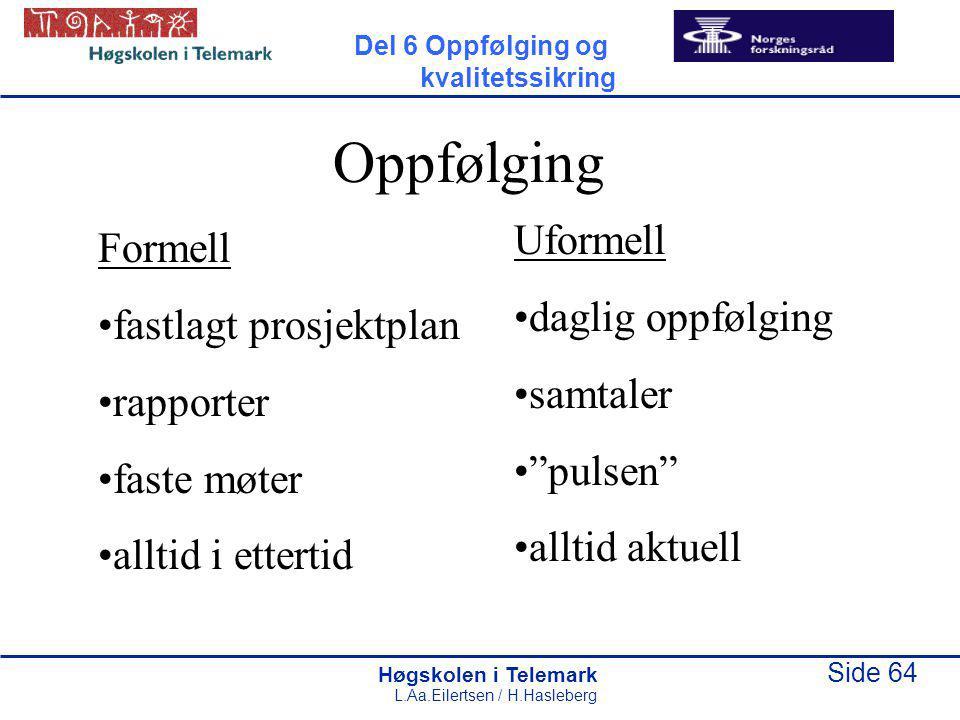 Høgskolen i Telemark Side 64 L.Aa.Eilertsen / H.Hasleberg Oppfølging Formell fastlagt prosjektplan rapporter faste møter alltid i ettertid Uformell da