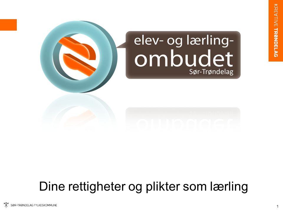 Ivaretar elevers og lærlingers interesser Ansatt i fylkeskommunen Rapporterer direkte til fylkestinget.