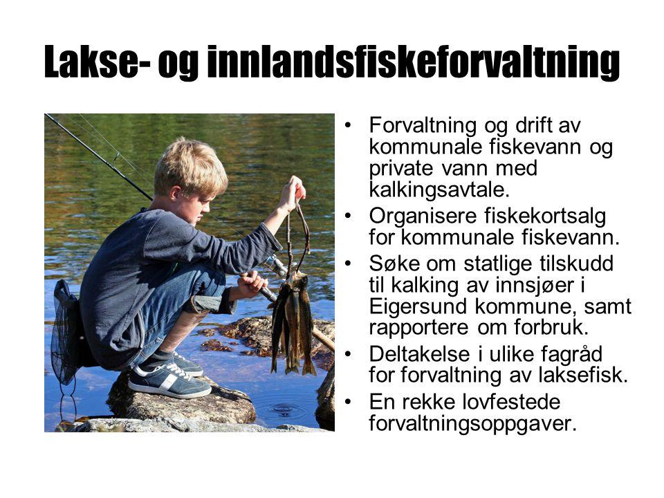 Lakse- og innlandsfiskeforvaltning Forvaltning og drift av kommunale fiskevann og private vann med kalkingsavtale.