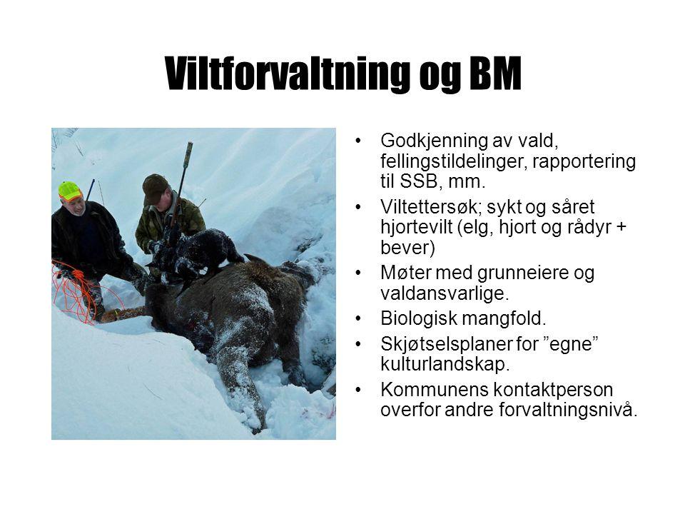 Viltforvaltning og BM Godkjenning av vald, fellingstildelinger, rapportering til SSB, mm.