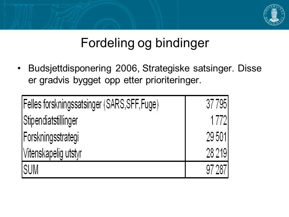 Fordeling og bindinger Budsjettdisponering 2006, Strategiske satsinger.
