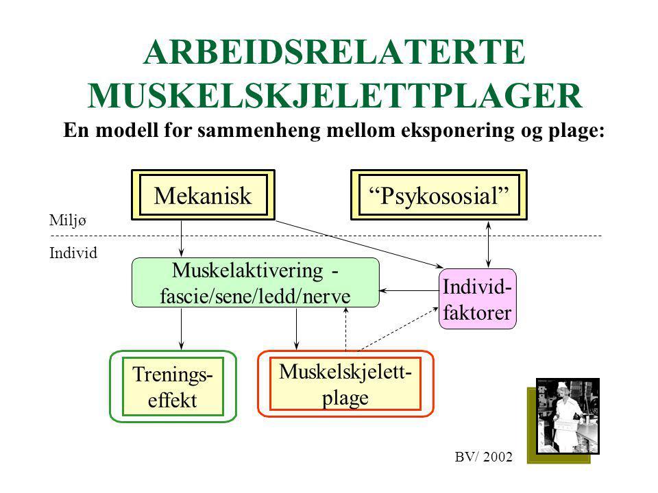 """ARBEIDSRELATERTE MUSKELSKJELETTPLAGER En modell for sammenheng mellom eksponering og plage: """"Psykososial""""Mekanisk Muskelaktivering - fascie/sene/ledd/"""