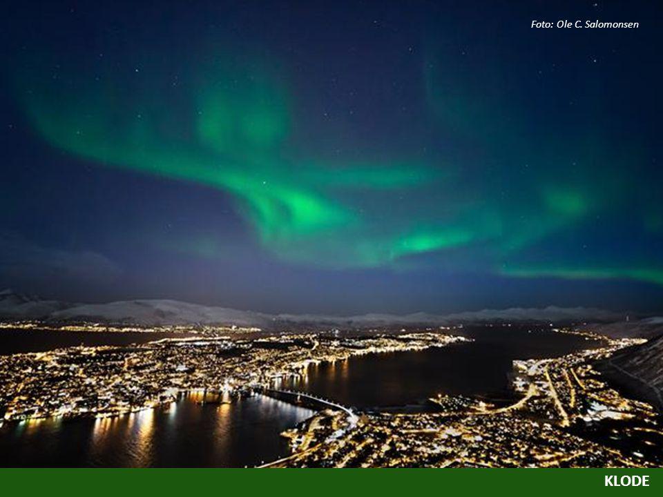 Foto: Ole C. Salomonsen
