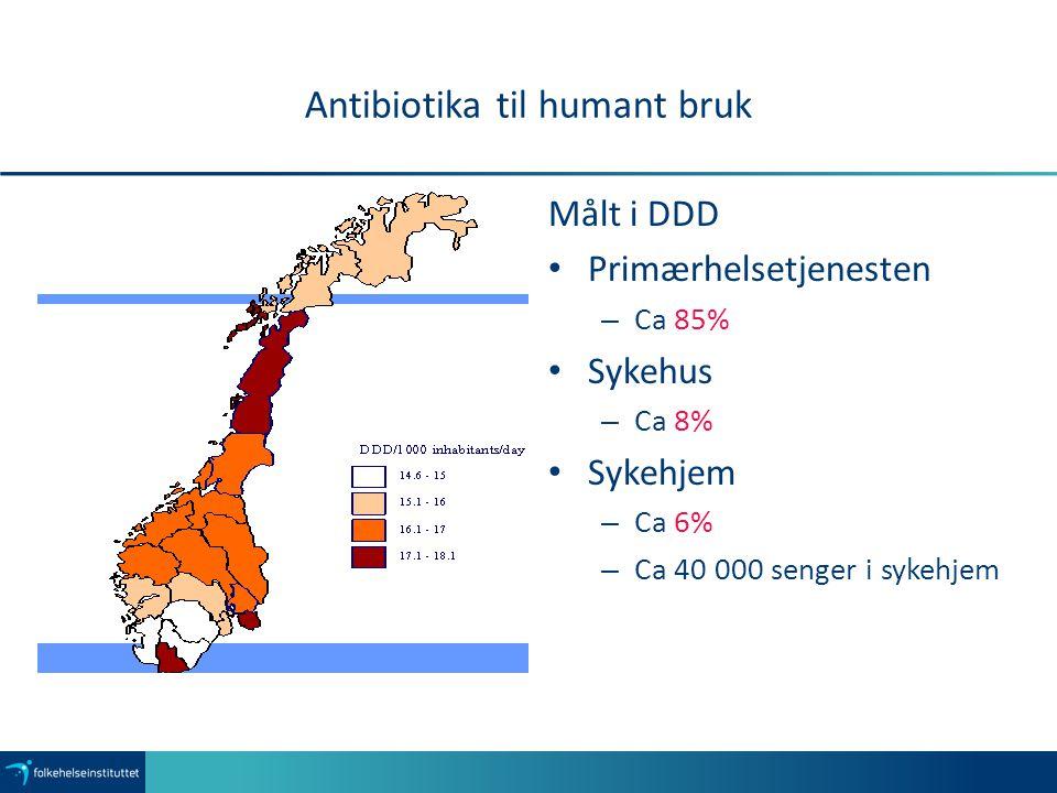 Antibiotika til humant bruk Målt i DDD Primærhelsetjenesten – Ca 85% Sykehus – Ca 8% Sykehjem – Ca 6% – Ca 40 000 senger i sykehjem