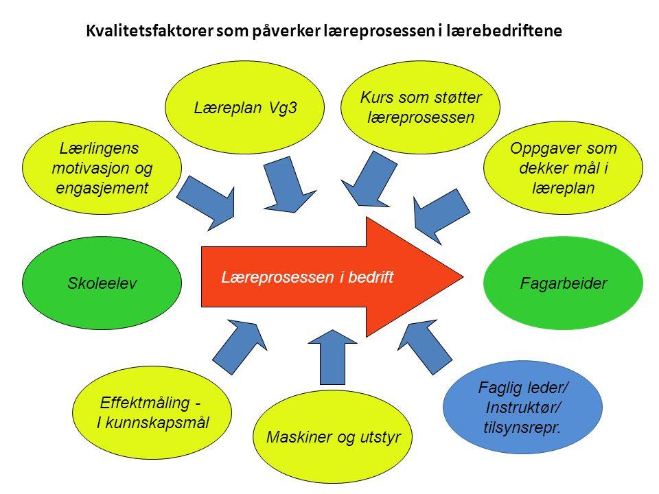 Fagarbeider Lover og forskrifter Forhold til skoler OKfisk Strategiplan Forhold til andre Forhold til lærebedrifter Forhold til Fylkes- kommunen Okfis
