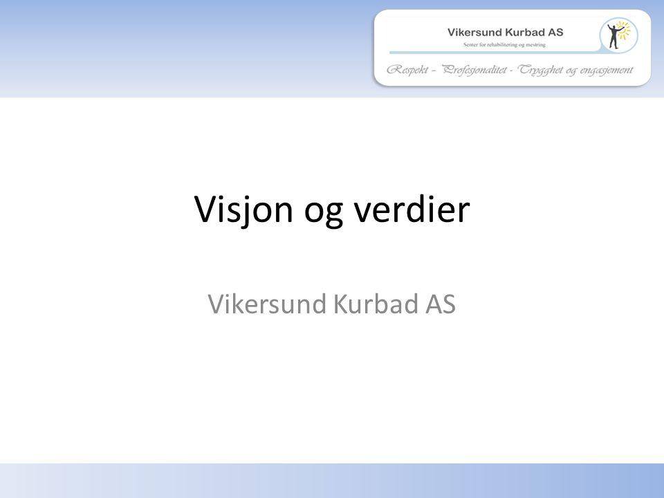 Respekt – profesjonalitet - trygghet og engasjement Visjon «Sammen flytter vi grenser» 2 Vikersund Kurbad AS