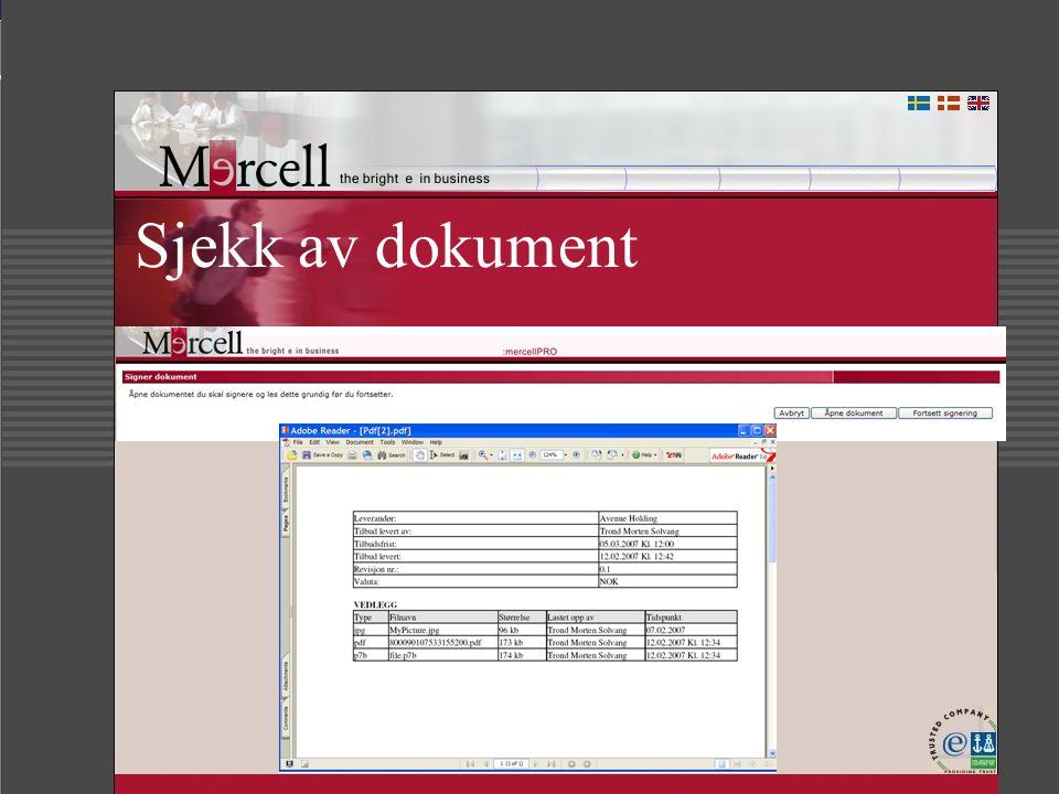 Sjekk av dokument