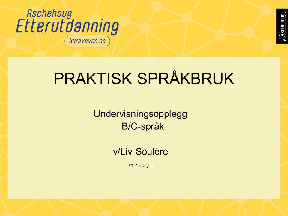 PRAKTISK SPRÅKBRUK Undervisningsopplegg i B/C-språk v/Liv Soulère © Copyright