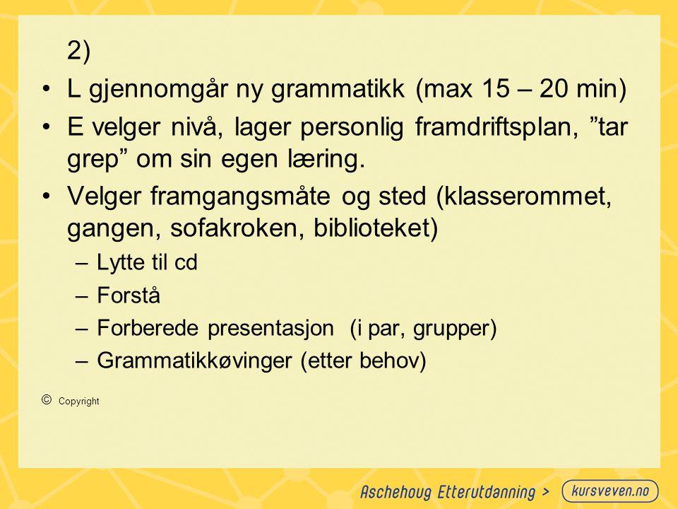 """2) L gjennomgår ny grammatikk (max 15 – 20 min) E velger nivå, lager personlig framdriftsplan, """"tar grep"""" om sin egen læring. Velger framgangsmåte og"""