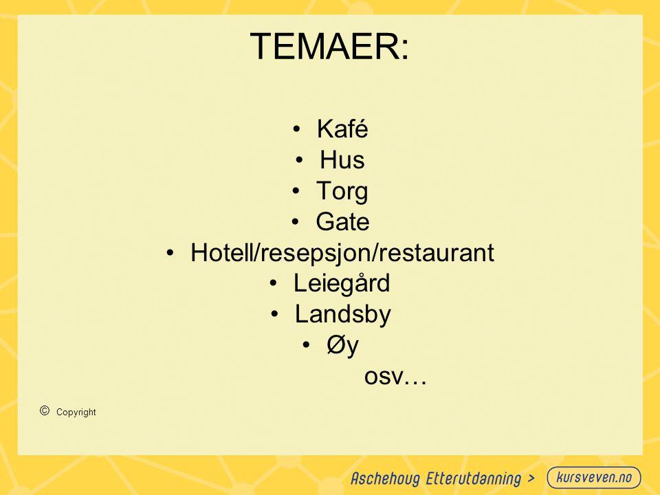 TEMAER: Kafé Hus Torg Gate Hotell/resepsjon/restaurant Leiegård Landsby Øy osv… © Copyright