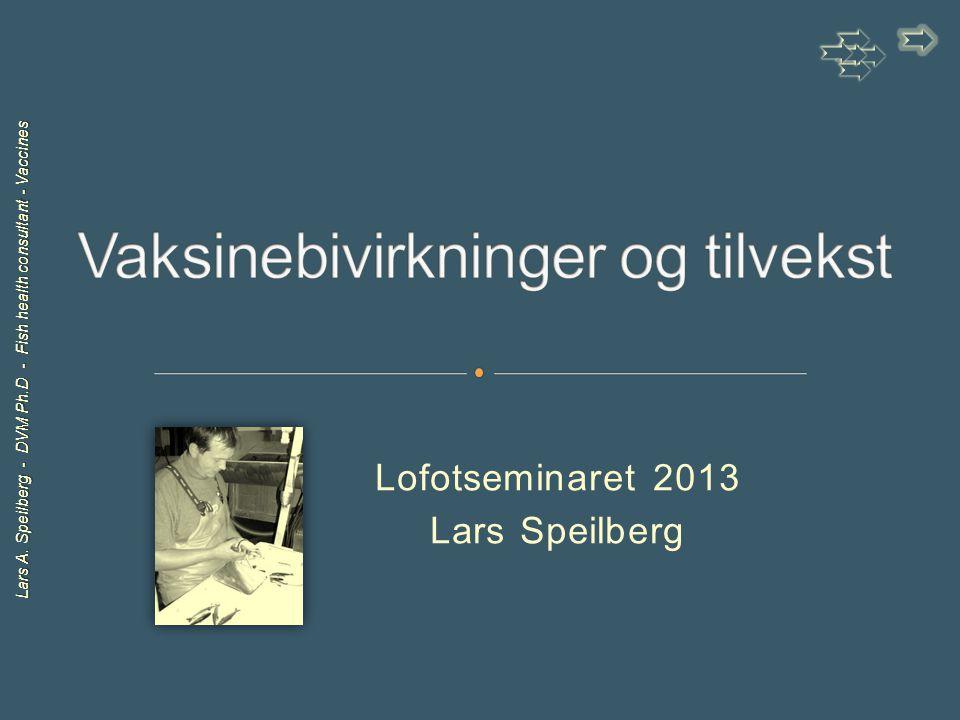Lars A. Speilberg - DVM Ph.D - Fish health consultant - Vaccines Lofotseminaret 2013 Lars Speilberg