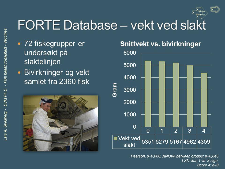 Lars A. Speilberg - DVM Ph.D - Fish health consultant - Vaccines 72 fiskegrupper er undersøkt på slaktelinjen Bivirkninger og vekt samlet fra 2360 fis