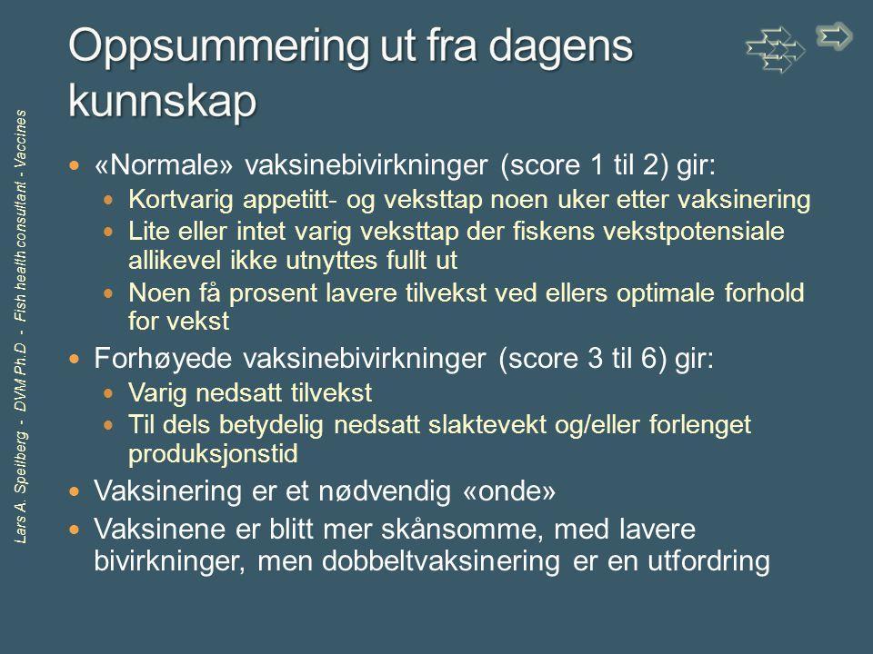 Lars A. Speilberg - DVM Ph.D - Fish health consultant - Vaccines «Normale» vaksinebivirkninger (score 1 til 2) gir: Kortvarig appetitt- og veksttap no