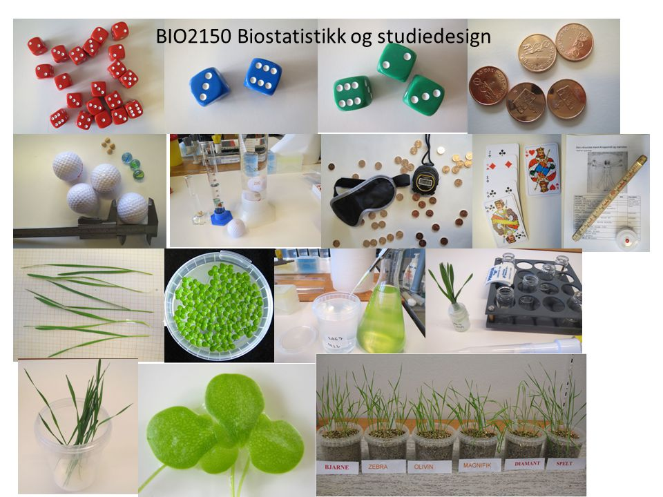 BIO2150 Biostatistikk og studiedesign