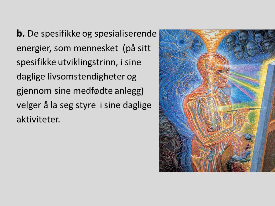 b. De spesifikke og spesialiserende energier, som mennesket (på sitt spesifikke utviklingstrinn, i sine daglige livsomstendigheter og gjennom sine med