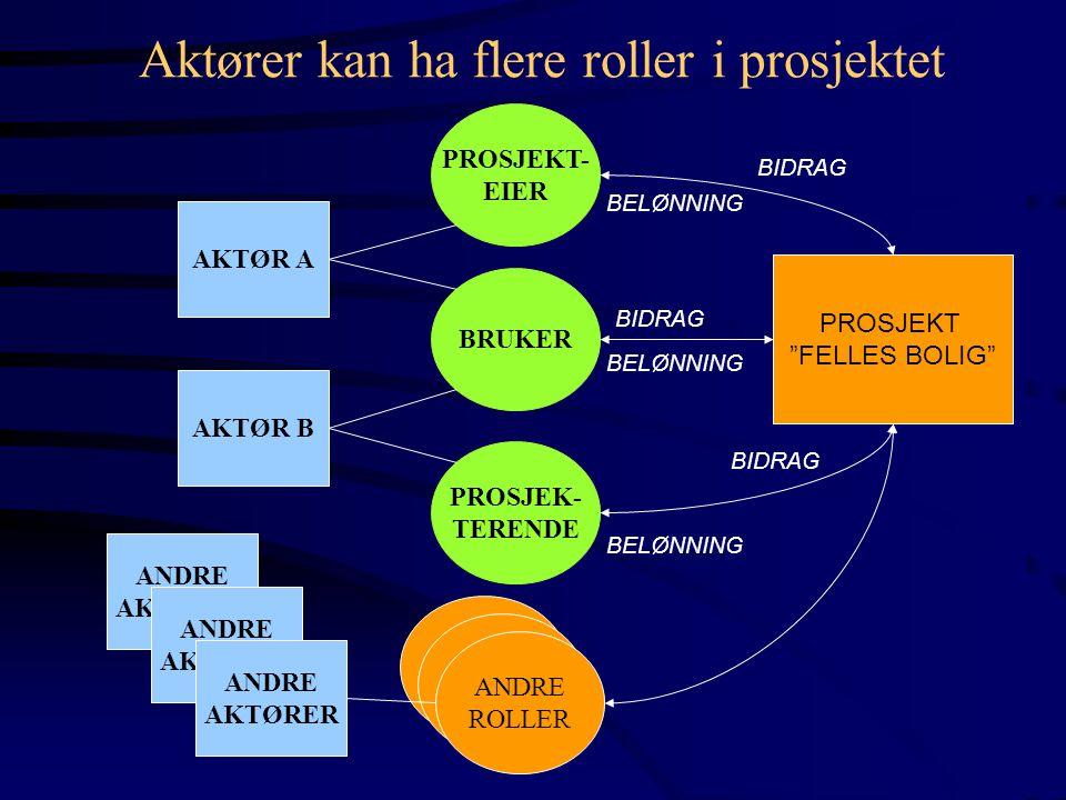 """AKTØR A AKTØR B PROSJEKT- EIER BRUKER PROSJEK- TERENDE PROSJEKT """"FELLES BOLIG"""" BIDRAG BELØNNING ANDRE AKTØRER ANDRE AKTØRER ANDRE AKTØRER ANDRE ROLLER"""
