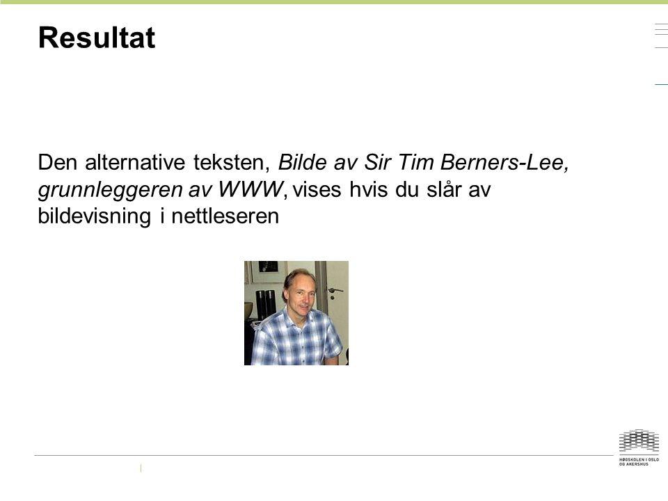 Resultat Den alternative teksten, Bilde av Sir Tim Berners-Lee, grunnleggeren av WWW, vises hvis du slår av bildevisning i nettleseren