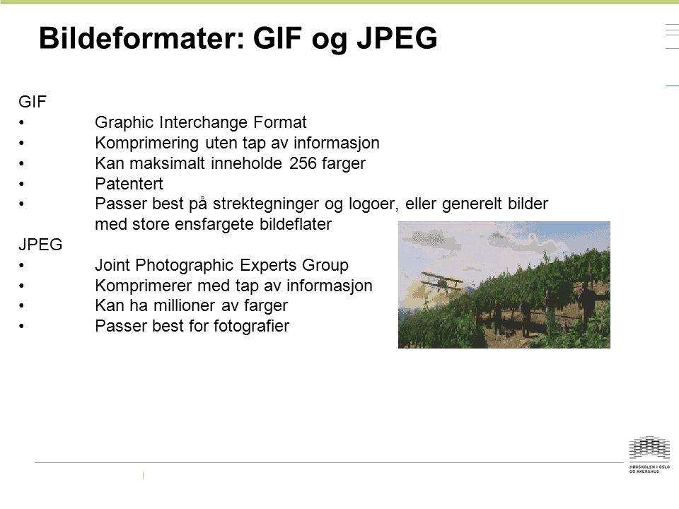 Bildeformater: GIF og JPEG GIF Graphic Interchange Format Komprimering uten tap av informasjon Kan maksimalt inneholde 256 farger Patentert Passer bes