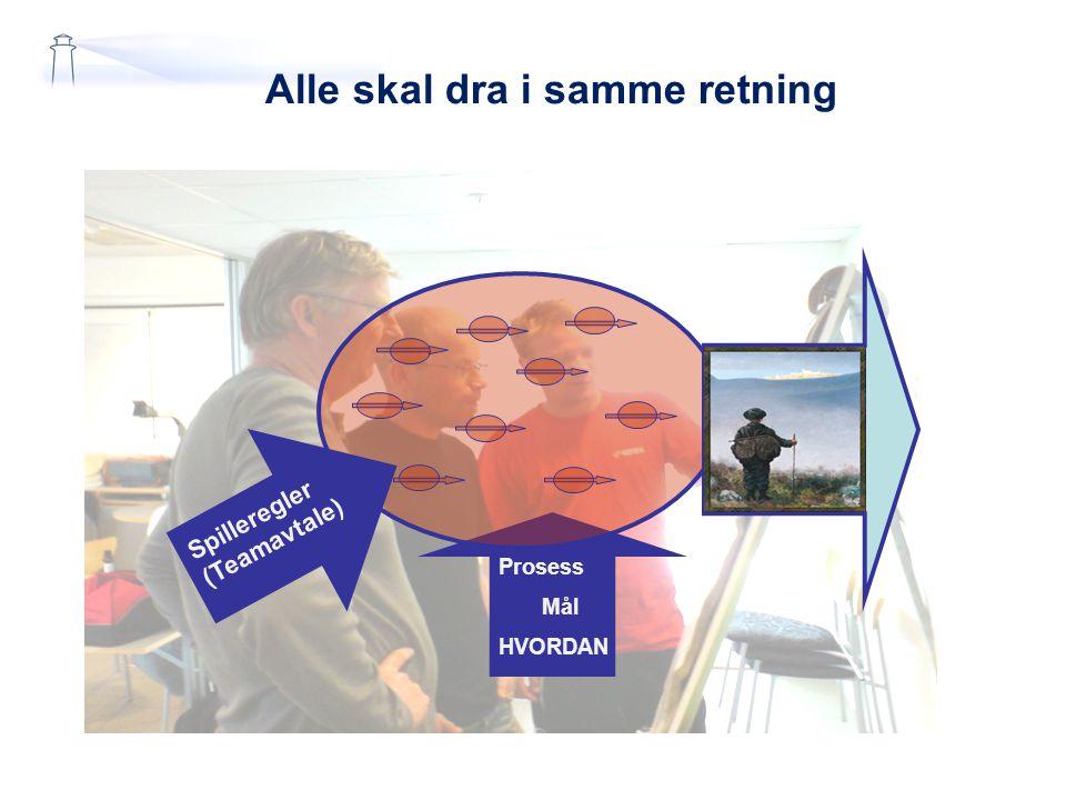 Prosessorientering i ISO Ledelsens ansvar Ressurs- styring Aanalyse og forbedring Kunde Kunde behov og krav Kunde Kunde- tilfreds- het Kontinuerlig forbedring av systemet for kvalitetsstyring Kundens stemme Realisering Prosess Realisering Prosess Måling Leveranse