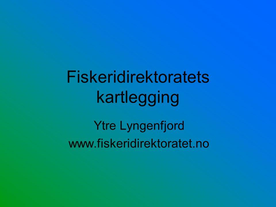 Fiskeridirektoratets kartlegging Ytre Lyngenfjord www.fiskeridirektoratet.no