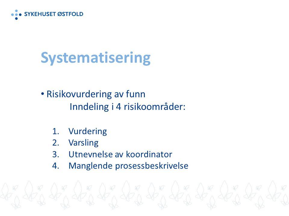 Systematisering Risikovurdering av funn Inndeling i 4 risikoområder: 1.Vurdering 2.Varsling 3.Utnevnelse av koordinator 4.Manglende prosessbeskrivelse