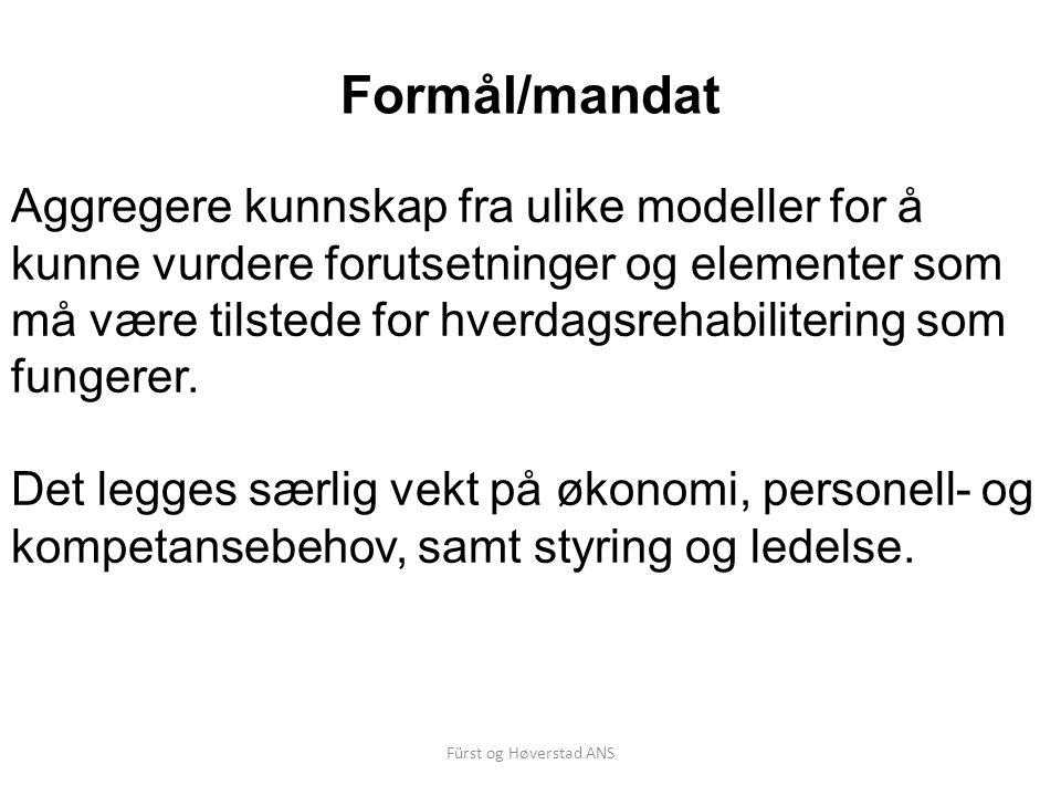 Fürst og Høverstad ANS Hovedmodellene: 1 Eget team Fordel: Medarbeiderne i teamet kan konsentrere seg om og holde fokus på hverdagsrehabilitering – uten «konkurranse» med vanlige pleie- og omsorgsoppdrag.