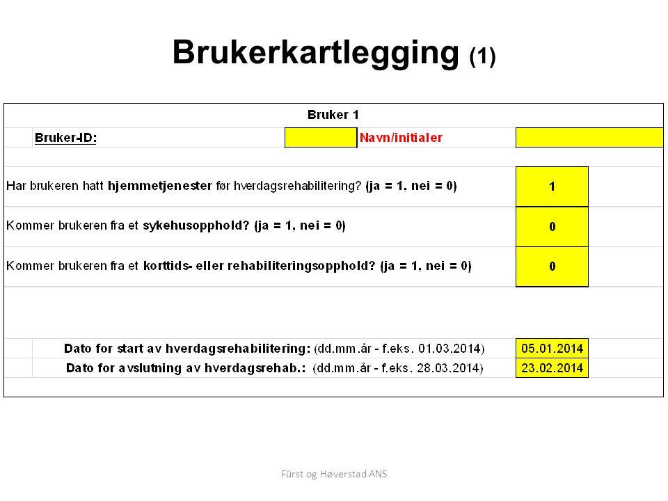 Fürst og Høverstad ANS Brukerkartlegging (1)