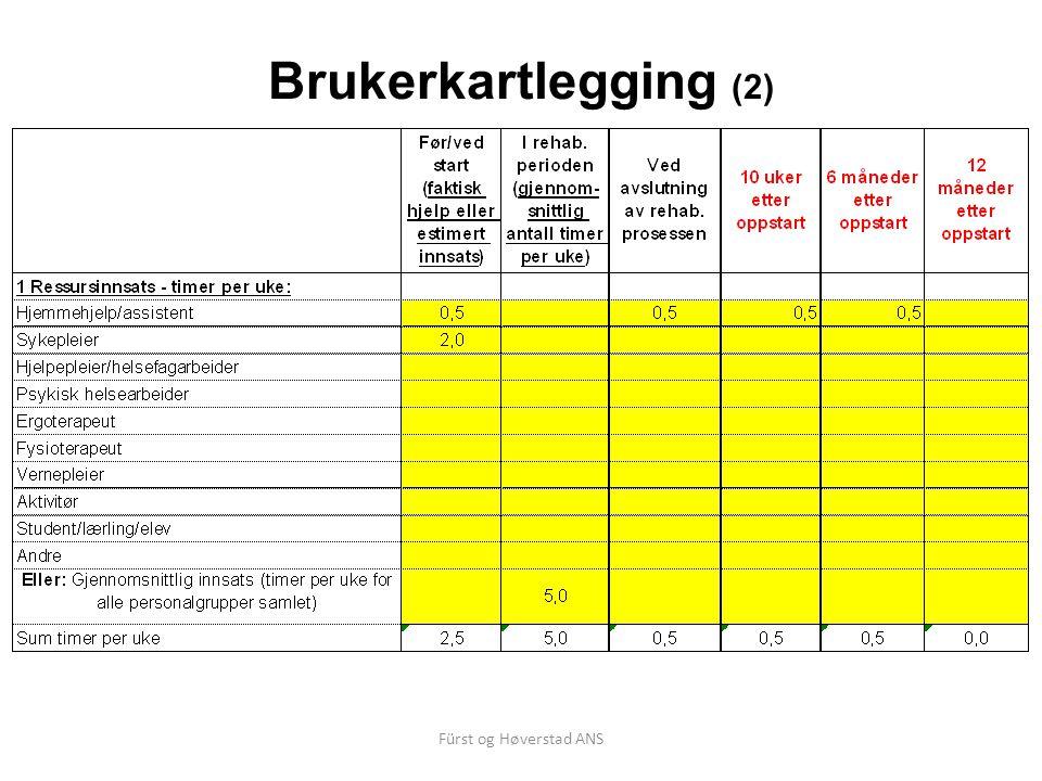 Fürst og Høverstad ANS Brukerkartlegging (2)