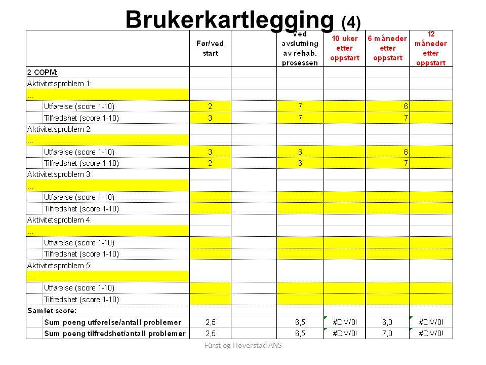 Fürst og Høverstad ANS Brukerkartlegging (4)