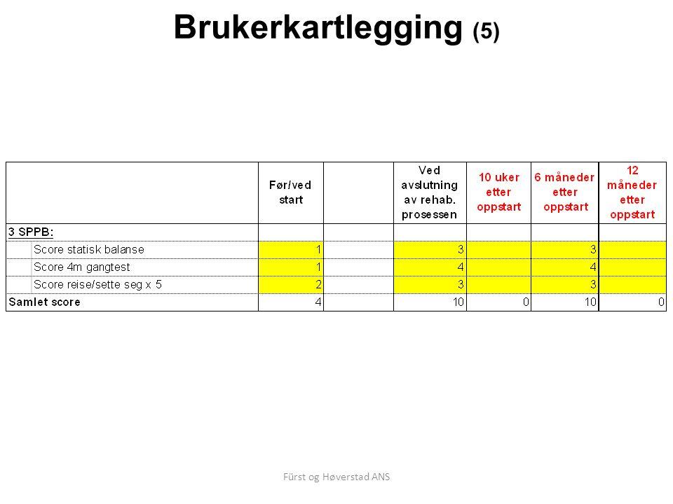 Fürst og Høverstad ANS Brukerkartlegging (5)