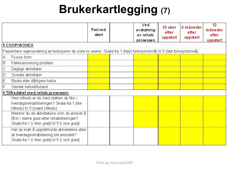 Fürst og Høverstad ANS Brukerkartlegging (7)