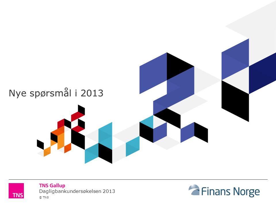 Dagligbankundersøkelsen 2013 © TNS Nye spørsmål i 2013